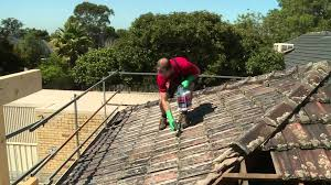 how to clean roof tiles diy at bunnings