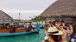 100 Constance Halaveli Maldives Resort Fish Feeding Time