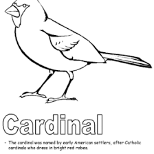 Cardinal Bird Coloring Page Printable Archives