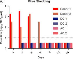 Asymptomatic Viral Shedding Influenza by Characterization Of An H4n2 Influenza Virus From Quails With A