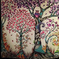 Bok Fortrollade Skogen Pennor Lyra Youngster Johannabasford Malarbokforvuxnacoloringbookforadultsfortrolladeskogen