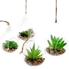 lb h f 2er set künstliche pflanzen sukkulenten kunstpflanze