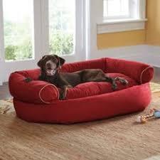 Dog Sofa Bed Uk