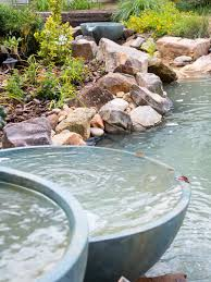 Spillway Bowl And Basin In A Backyard Pond - Duke Manor Farm Pond Makeover Feathers In The Woods Beautiful Backyard Landscape Ideas Completed With Small And Ponds Gone Wrong Episode 2 Part Youtube Diy Garden Interior Design Very Small Outside Water Features And Ponds For Fish Ese Zen Gardens Home 2017 Koi Duck House Exterior And Interior How To Make A Use Duck Pond Fodder Ftilizer Ducks Geese Build Nodig Under 70 Hawk Hill Waterfalls Call Free Estimate Of Duckingham Palace Is Hitable In Disarray Top Fish A Big Care