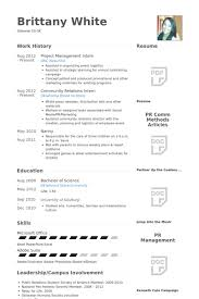 Project Management Intern Resume Example