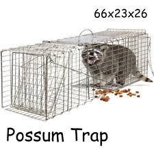 live cat trap cat rodent animal traps ebay