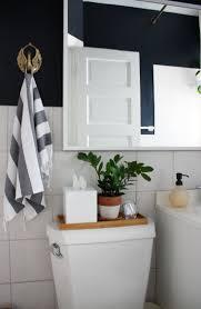 Best Plant For Bathroom by 25 Best Rental Bathroom Ideas On Pinterest Small Rental