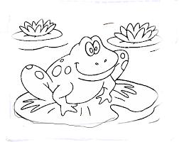 Color Me Frog