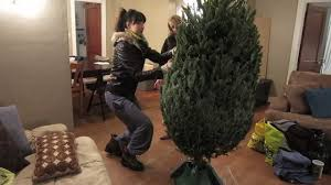 Griswold Christmas Tree by Christmas Tree Shopping Youtube