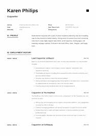 Guide + 12 Different Copywriter Resume Samples | 2019 | PDF | Example Objective For Resume Fresh Cover Letter Profile Section Of Elegant Inspirational Skills What To Include In A Career Hlights Experience On Examples New Collection Beautiful Greenbeltbowl Try These To Write In About Me 50 Tips Up Your Game Instantly Velvet Jobs Amazing Science Get You Hired Lviecareer Students With No Work Pdf Cool Rumes Core For Personal Customer How Post Lkedin Sample 30