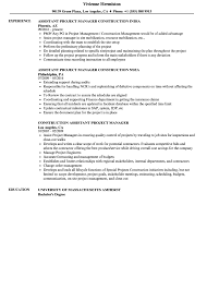 100 Assistant Project Manager Resume Sap India Healthcare Test Cases Medical