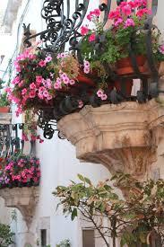Beautiful French Balcony Tumblr B Garden Window Box