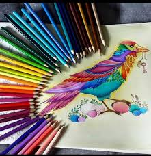 247 Best Big Person Colouring Images On Pinterest