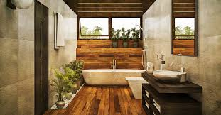 Best Plant For Windowless Bathroom by Top 5 Bathroom Plants And Why You Should Have Them