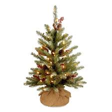 National Tree Company 2 Ft Pre Lit Artificial Christmas With 15 Constant White
