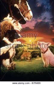 le cochon devenu berger ée 1995 australia usa