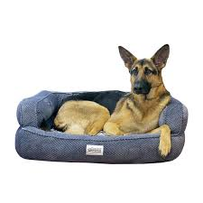 Top Rated Orthopedic Dog Beds by Amazon Com R2p Group Simmons Beautyrest Colossal Orthopedic