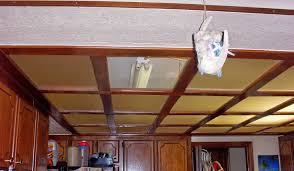 Drop Ceiling For Basement Bathroom by Trend 21 Kitchen With Drop Ceiling On Kitchen Very Stylish