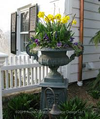 planter with yellow daffodils willow and pansies