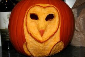 Owl Pumpkin Template by Barn Owl Pumpkin By Ladysilverwood On Deviantart