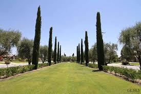 Christmas Tree Lane Ceres Ca Address by Real Estate For Sale 6608 Woodall Bakersfield Ca 93306 Mls