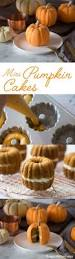 Easy Pumpkin Desserts Pinterest by Best 25 Pumpkin Cake Recipes Ideas On Pinterest Snack Cakes