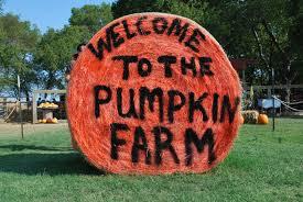 Big Orange Pumpkin Patch Celina Texas by Take A Drive To The Big Orange Pumpkin Farm
