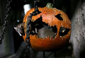 Country Of Origination Of Halloween by Celebrating Halloween In Europe