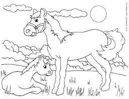 Animals Perfect Animal Coloring Pages Pdf