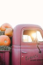 Chatham Kent Pumpkin Patches by Best 25 The Cherry Orchard Ideas On Pinterest Tree Farms Near