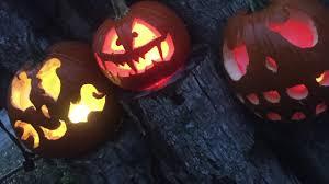 Roger Williams Pumpkin Festival 2017 by 2016 Jack O Lantern Spectacular Roger Williams Park Youtube