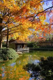 Fort Worth Botanical Gardens dunneiv