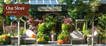 Seattle Plant Store – Garden Center   Ravenna Gardens Shop Window At Next Home And Garden Store Ldon Road Camberley Handsome And Design 12 For Your Home Decor Stores With Eco Indoor House Sams Club Zoom Pan Loversiq Homebase Retail Group Improvements Diy Landscape Ideas Thehomestyle Co Inspirational Sloped Covington Georgia Newton County College Restaurant Menu Attorney Becker Pet Gardencandy Store Grdn For Urban Gardener New York By Design Brooklyn Sprout Decor Stores Beautiful Outdoor