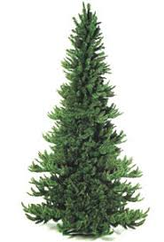 Custom Made To Order Noble Christmas Tree Comes From 3 Feet 10 Tall
