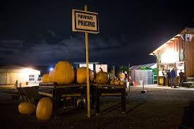 Seattle Pumpkin Patch For Adults by Pumpkins Corn Even Zombies Grow Into Agritourism Revenue
