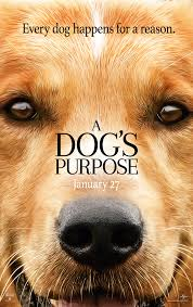 A Dogs Purpose 2017 IMDb