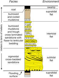 Trough Cross Bedding by An Online Guide To Sequence Stratigraphy