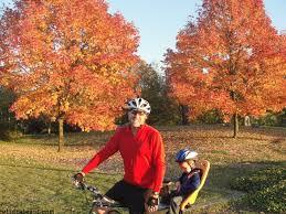 Pumpkin Patch Seattle Washington by 15 Western Washington Farms Parks Hikes To Enjoy This Fall