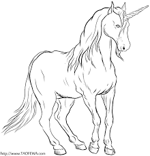 Detailed Unicorn Coloring Pages Sketch Page