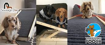 Dog Ramp Online, Buy Pet Ramp Online Inexpensive Doggie Ramp With Pictures Best Dog Steps And Ramps Reviews Top Care Dogs Photos For Pickup Trucks Stairs Petgear Tri Fold Reflective Suv Petsafe Deluxe Telescoping Pet Youtube The Writers Fun On The Gosolvit And Side Door Dogramps Steps Junk Mail For Cars Beds Fniture Petco Lucky Alinum Folding Discount Gear Trifolding Portable 70 Walmartcom 5 More Black Widow Trifold Extrawide