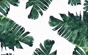 Elegant California Wallpaper Desktop Tumblr Beach