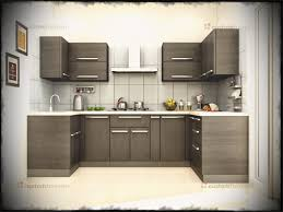 Nice Awesome Modular Kitchen Designs U Shaped For Island Design With C Peenmedia
