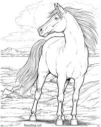 615x770 Wild Horse Coloring Pages Realistic People