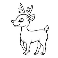 Reindeer Coloring Page A Pages Baby