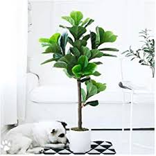 size 39x20inch große nordic simulation pflanze fiddle leaf