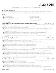 Resume Templates Young Adults With Ministry For Prepare Perfect Free 312