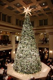 Popular Christmas Tree Species by Tree Chicago Marshall Fields Illinois Recipes Pinterest