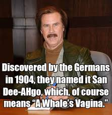 ron burgundy funny quote funny quotes and text pinterest ron