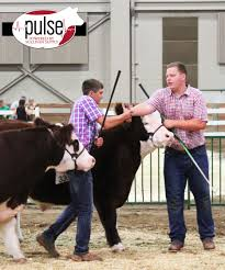 Michigan Livestock Expo | Market Beef Results | The Pulse 1021cattle6ajpg Purple Reign Cattle Company Online Sale The Pulse February 2017 Texas Longhorn Trails Magazine By A Good Place To Be Cow At Fort Worth Stock Show Animals Are Commercial And Registered Ozarks Farm Neighbor Newspaper Cattlemen Opmistic About Resumed Beef Exports To China News Blog Lautner Farms Experience The Value Best Of Southwest Shootout Overall Market Burke Hidin In Sand Steer November 2015 Graham Livestock Auction Sanctioned Shows Ijbba Iowa Junior Beef Breeds Association