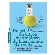 du sel du citron du vinaigre du bicarbonate de soude 250